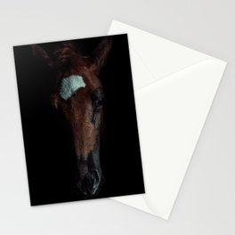 Horse In The Dark Stationery Cards