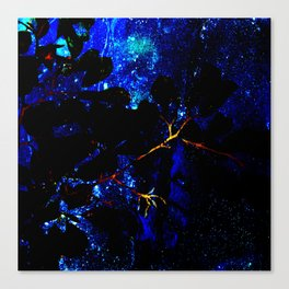 Nightsky Canvas Print