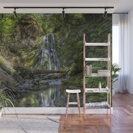 Spirit Falls with Reflections Wall Mural