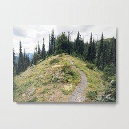 Skyline Ridgeline Metal Print