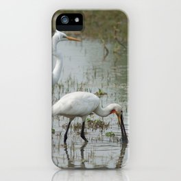 Great egret (left) and Eurasian spoonbill searching for food (right).  iPhone Case