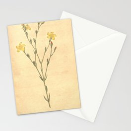 Flower 403 linum africanus African Flax19 Stationery Cards