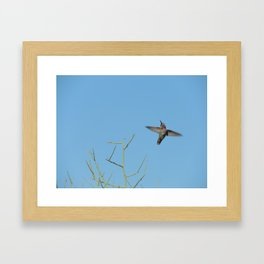 Flying high Framed Art Print