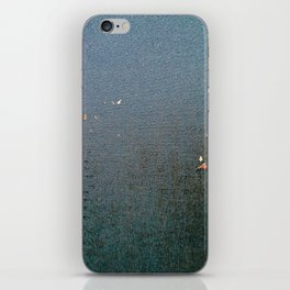 Sticky Leaves iPhone Skin