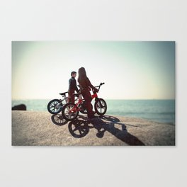 Chewy and Han Canvas Print