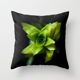 Aptenia succulent plant Throw Pillow