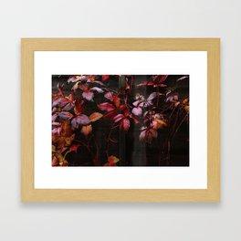 no longer summer Framed Art Print