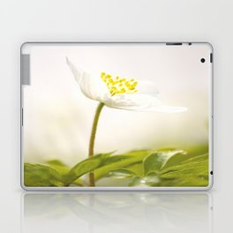 Wood Anemone Blooming in Forest Laptop & iPad Skin