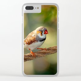 The wonderful african finch Clear iPhone Case
