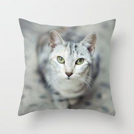 Cat's eyes Throw Pillow