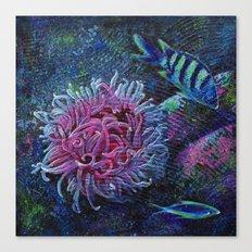Aquatic (2 of 3) Canvas Print