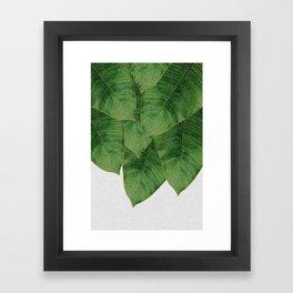Banana Leaf III Framed Art Print