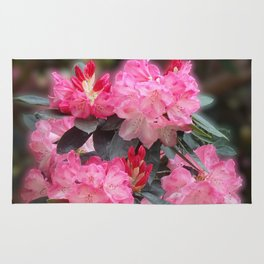 Dreamy Pink Rhododendrons Rug