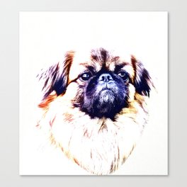 Lion Dog (white background) Canvas Print