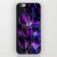 Blue and Purple  iPhone & iPod Skin
