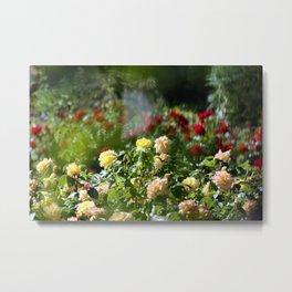 Through the haze of roses Metal Print
