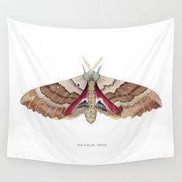 Big Poplar Sphix Wall Tapestry