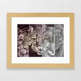 Endangered Cats Framed Art Print