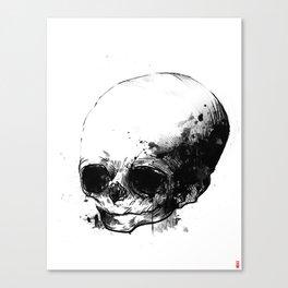 fetus Canvas Print