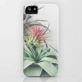 Air Plant Collection II iPhone Case