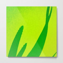 Aloe, green, lime-green Metal Print