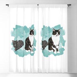 Link & Navi Blackout Curtain