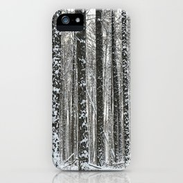 White trees-winter forest iPhone Case