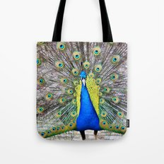 Peacock Display Tote Bag