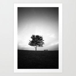 Tree and Bench Art Print