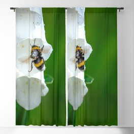 The Bumble Bee Blackout Curtain