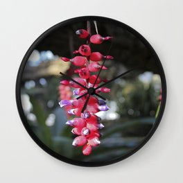 red exotic flower Wall Clock