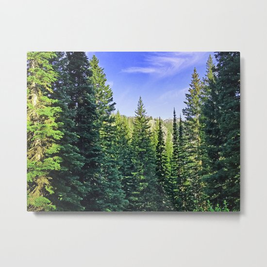 Tony Grove Utah Metal Print