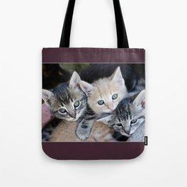 Kittens, 3 balls of tenderness Tote Bag
