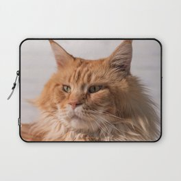 Purebred red Maine Coon cat lying on the floor at home Laptop Sleeve