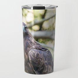 Golden eagle resting on a branch Travel Mug