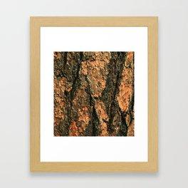 Eco Bois Framed Art Print