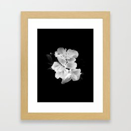 geranium in bw Framed Art Print