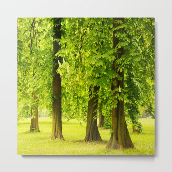One day in the park - tranquil mood - #society6 #buyart Metal Print