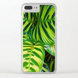 Leaf 1 Clear iPhone Case