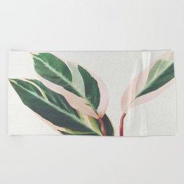Pink Leaves III Beach Towel