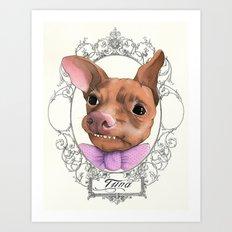 Chihuahua - Tuna  Art Print
