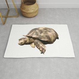 Sulcata Tortoise (grazing) Rug