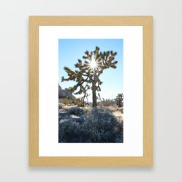 Not THE Joshua Tree Framed Art Print