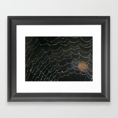 Moring drops Framed Art Print