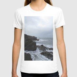 Shore Acres, Oregon T-shirt