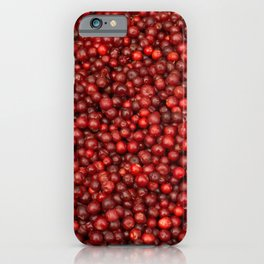 Red ripe lingonberry iPhone Case