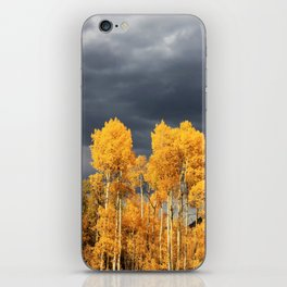 Golden Aspens and an Impending Storm iPhone Skin