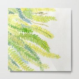 Fern Leaves Watercolor Metal Print