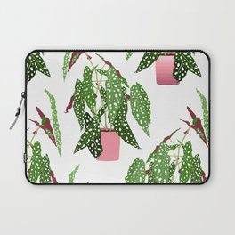 Simple Potted Polka Dot Begonia Plants in White Laptop Sleeve