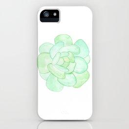 Crassula - Green Succulent iPhone Case